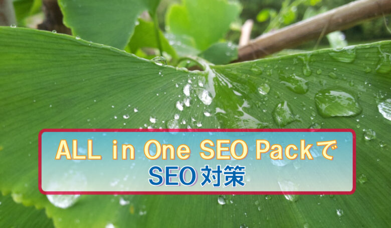 ALL in One SEO Pack、SEO、対策