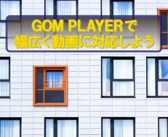 GOM PLAYER、動画