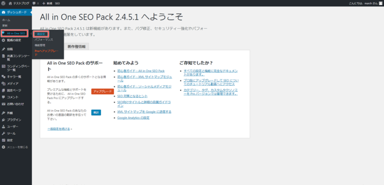 All in One SEO Pack設定解説-04