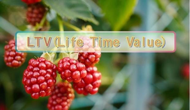 LTVのイメージ画像