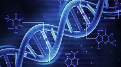 両親や祖父母から受け継いだ遺伝