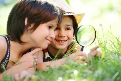 虫眼鏡検索のイメージ