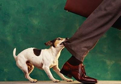 足を引っ張る人に出会った時の対処法&対策